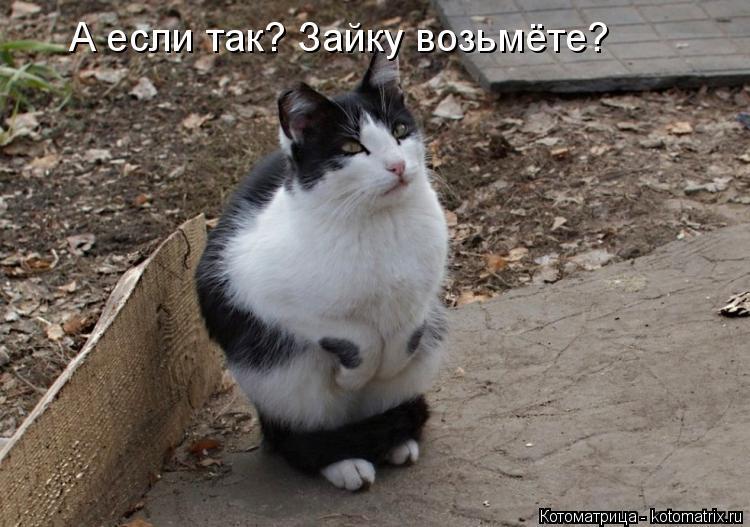 http://s6.uploads.ru/05u3h.jpg