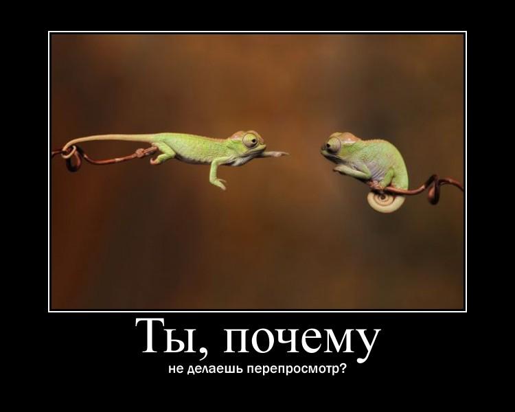 http://s6.uploads.ru/1rokN.jpg