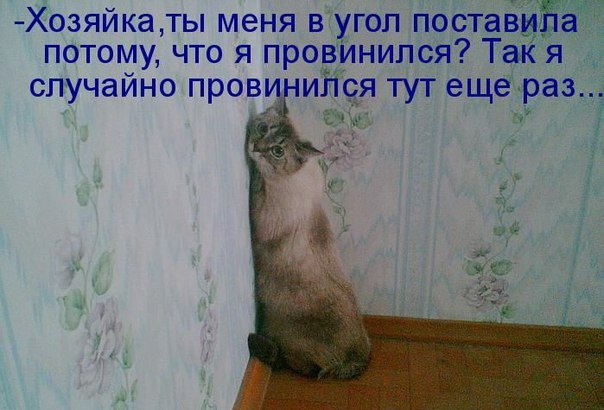 http://s6.uploads.ru/6JaGl.jpg