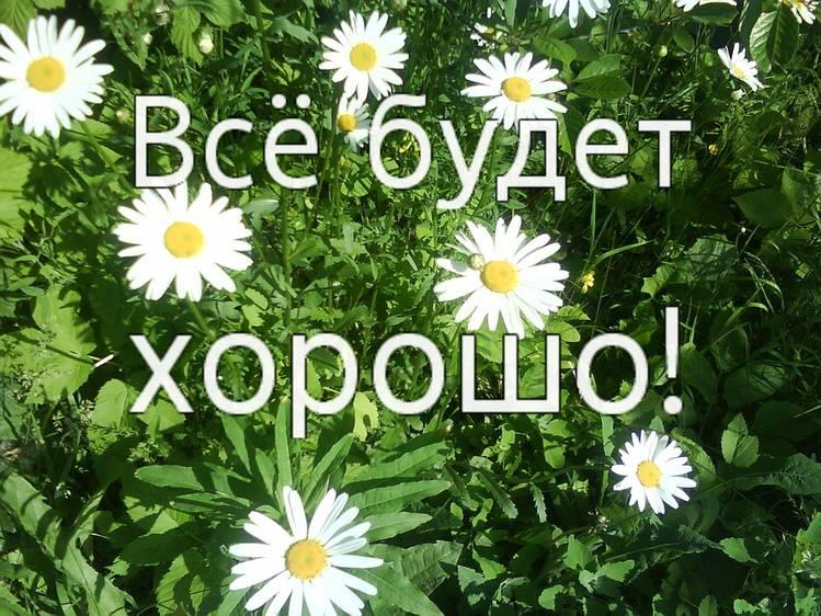 http://s6.uploads.ru/7pf0L.jpg
