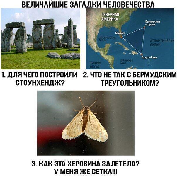 http://s6.uploads.ru/8Ck7s.jpg