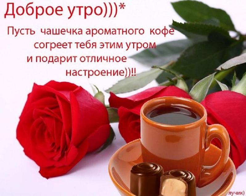 http://s6.uploads.ru/9VdAM.jpg