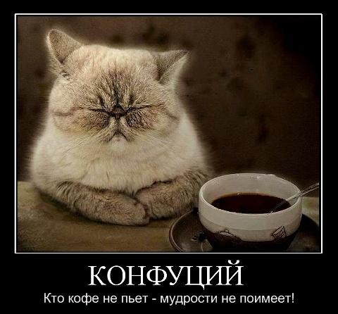 http://s6.uploads.ru/A8F9r.jpg