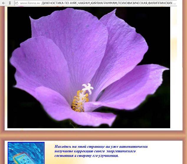 http://s6.uploads.ru/Am7I5.jpg