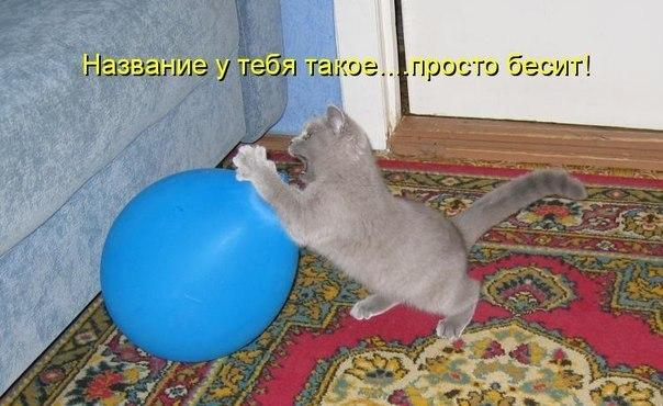 http://s6.uploads.ru/Azxo4.jpg