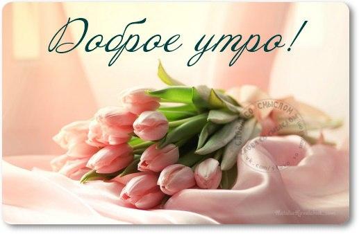 http://s6.uploads.ru/Cs1Wg.jpg