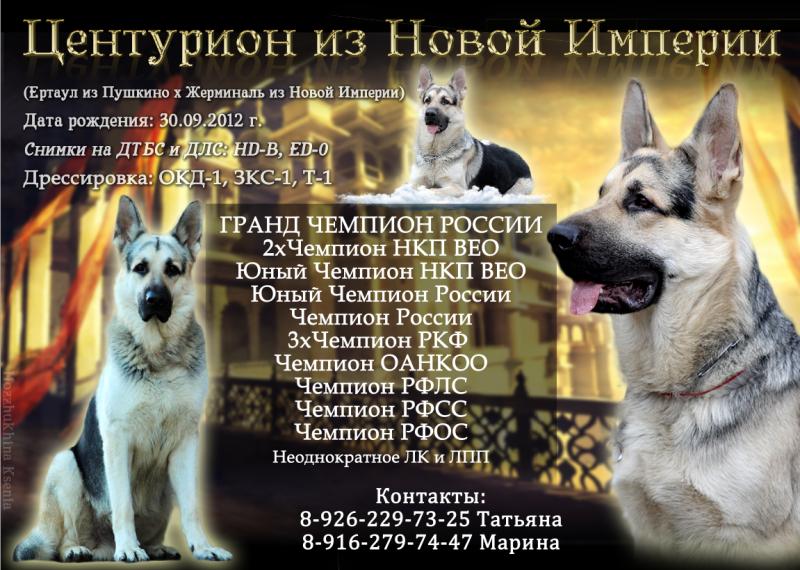http://s6.uploads.ru/Ef58z.png