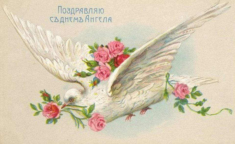 http://s6.uploads.ru/ErCov.jpg