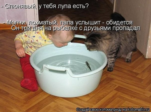 http://s6.uploads.ru/FX2mc.jpg