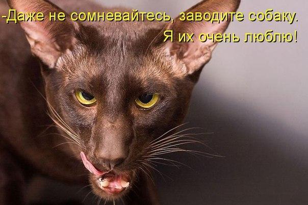 http://s6.uploads.ru/H7lot.jpg