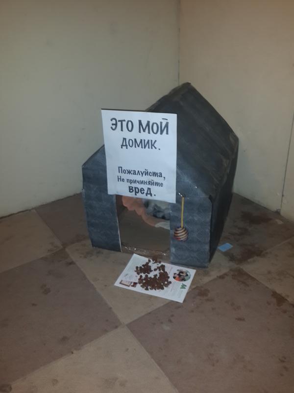 http://s6.uploads.ru/HVPD6.jpg