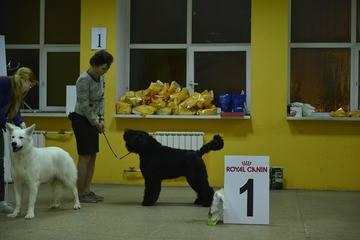 http://s6.uploads.ru/IAHZU.jpg