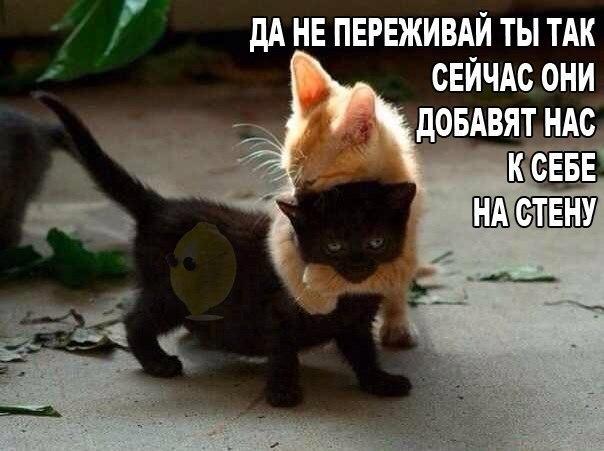 http://s6.uploads.ru/IRZ1M.jpg