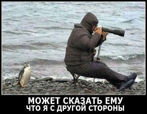 http://s6.uploads.ru/IpavZ.jpg