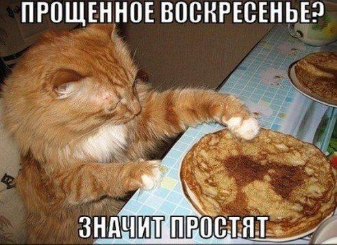 http://s6.uploads.ru/MHNS6.jpg