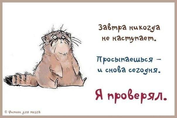 http://s6.uploads.ru/Nsk7c.jpg