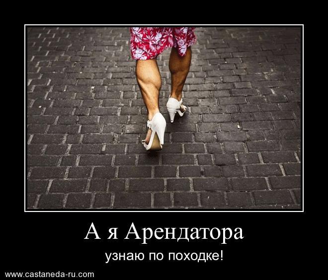 http://s6.uploads.ru/OIwSv.jpg