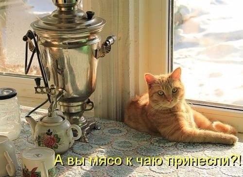 http://s6.uploads.ru/OZQb9.jpg