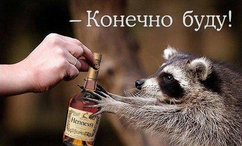 http://s6.uploads.ru/QG7Dn.jpg