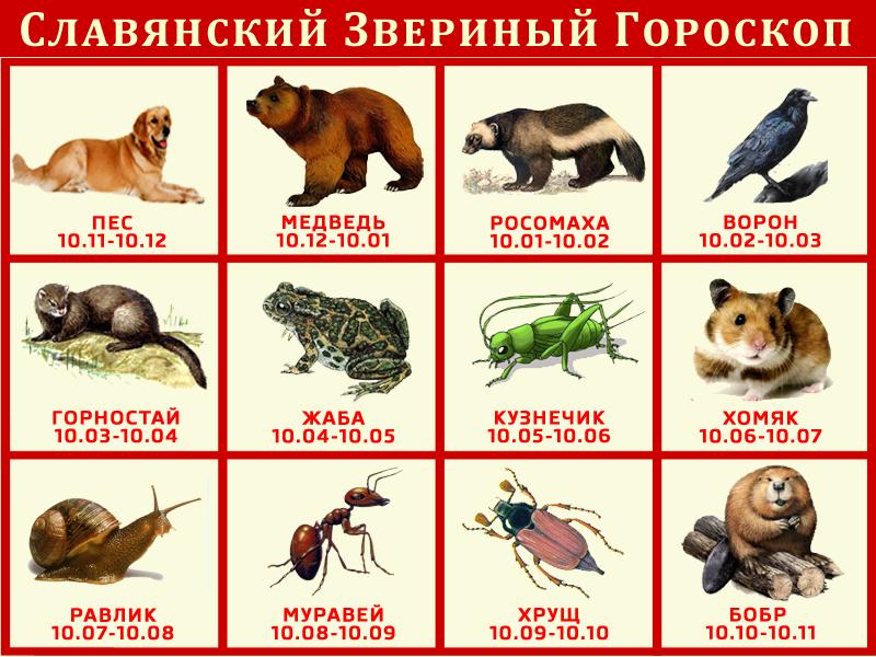http://s6.uploads.ru/Sku56.png