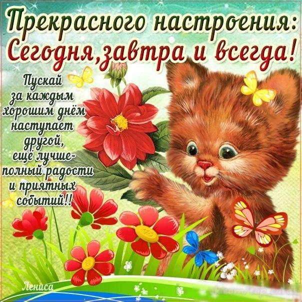 http://s6.uploads.ru/T4VSx.jpg