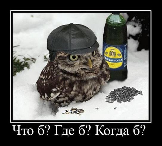 http://s6.uploads.ru/TYmky.jpg