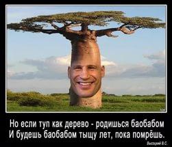 http://s6.uploads.ru/UxaOM.jpg