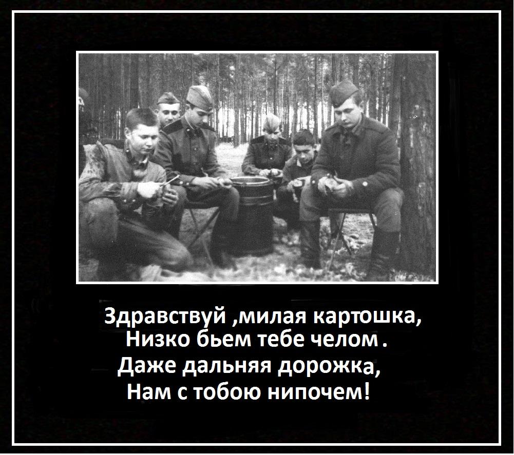 http://s6.uploads.ru/VNsyo.jpg