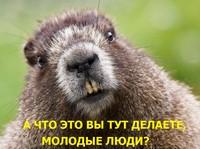 http://s6.uploads.ru/X7OKJ.jpg