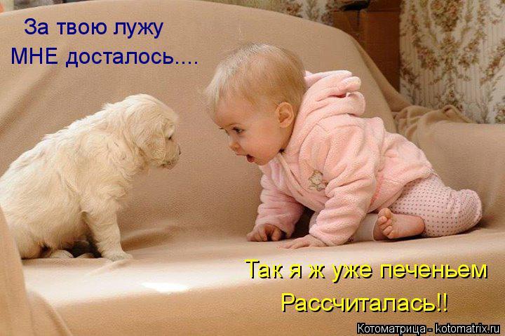 http://s6.uploads.ru/XTNHO.jpg