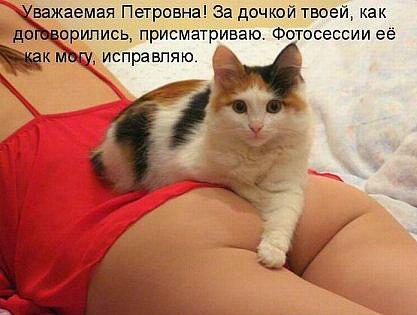 http://s6.uploads.ru/abTcY.jpg