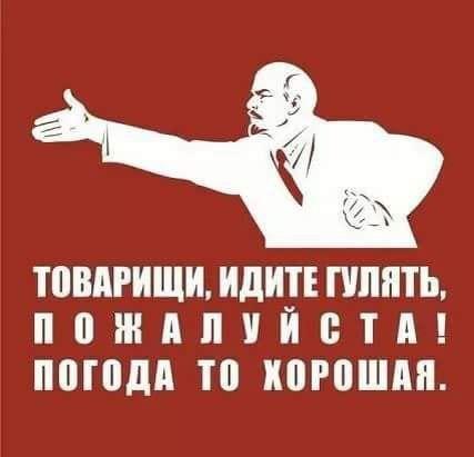 http://s6.uploads.ru/brocH.jpg