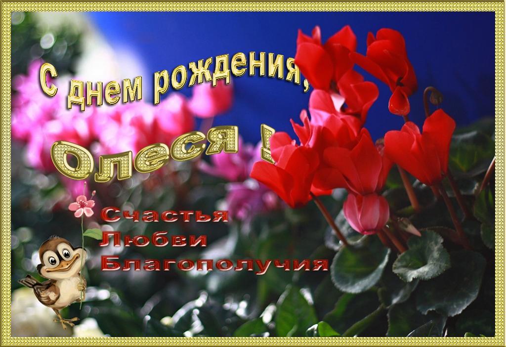 http://s6.uploads.ru/btL1r.jpg