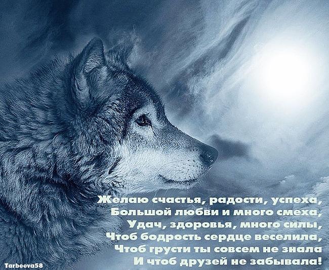 http://s6.uploads.ru/cjbyG.jpg
