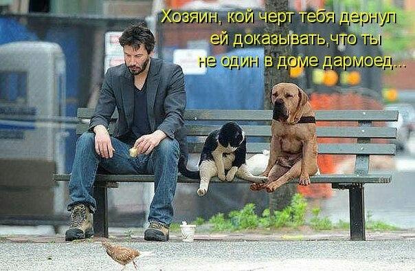 http://s6.uploads.ru/e1SJq.jpg