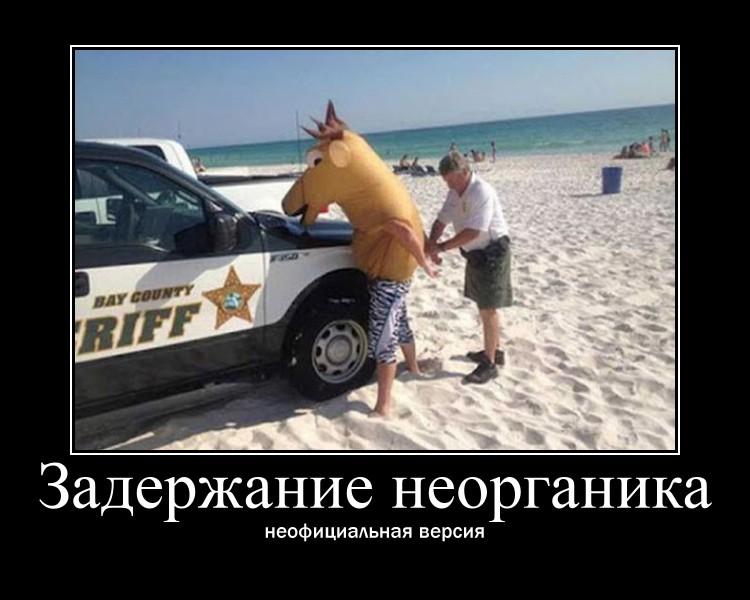 http://s6.uploads.ru/e46Q1.jpg