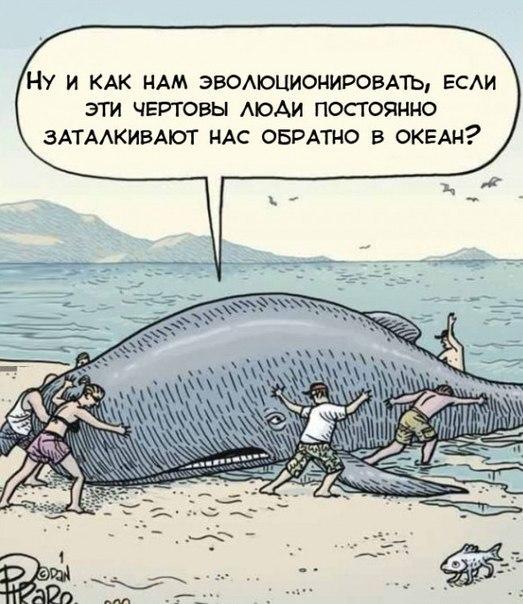 http://s6.uploads.ru/eGafS.jpg