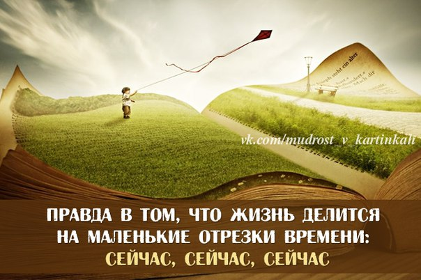 http://s6.uploads.ru/efM0R.jpg