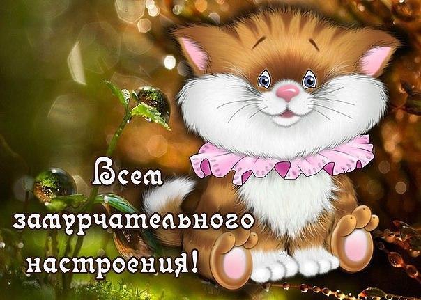 http://s6.uploads.ru/fT1JE.jpg