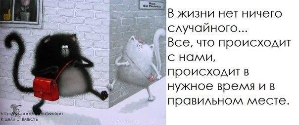 http://s6.uploads.ru/gV9iw.jpg