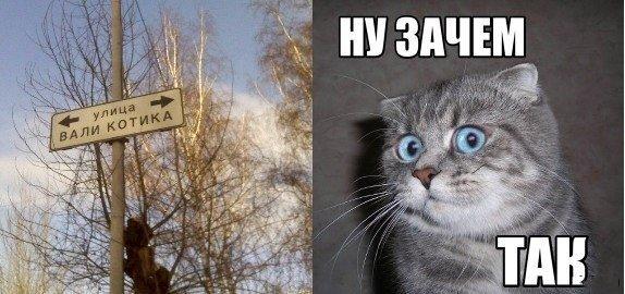 http://s6.uploads.ru/gsE6v.jpg