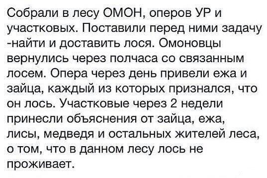 http://s6.uploads.ru/iDSsR.jpg