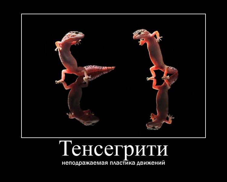 http://s6.uploads.ru/iELr7.jpg