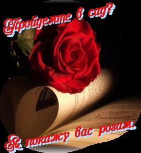 http://s6.uploads.ru/idL3c.png