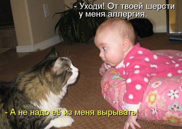 http://s6.uploads.ru/jZbDR.jpg