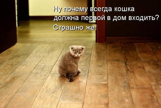 http://s6.uploads.ru/kenMW.jpg