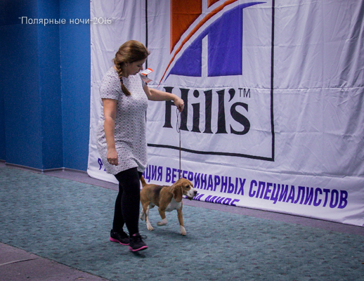 http://s6.uploads.ru/m7eKd.jpg
