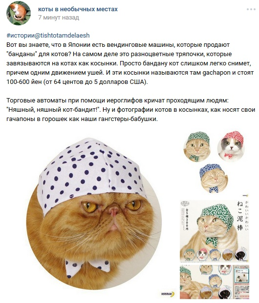 http://s6.uploads.ru/norUc.jpg
