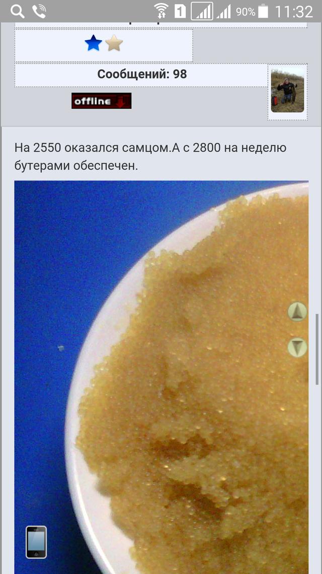 http://s6.uploads.ru/npifZ.png