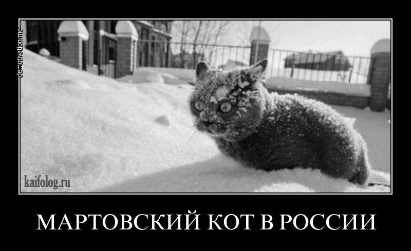 http://s6.uploads.ru/oysTp.jpg